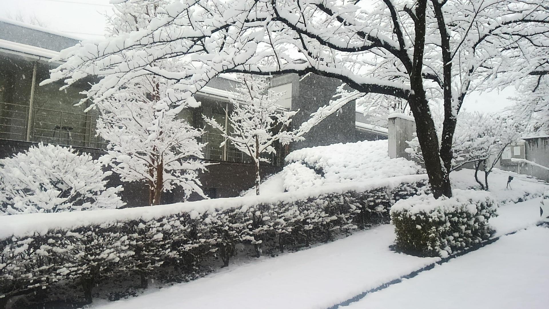 雪化粧の管理棟