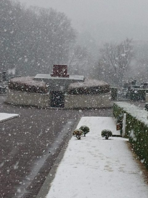 大雪のお彼岸お中日