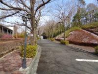 お参りの方「東京多摩霊園のイベントを父はとても楽しみにしていました」。